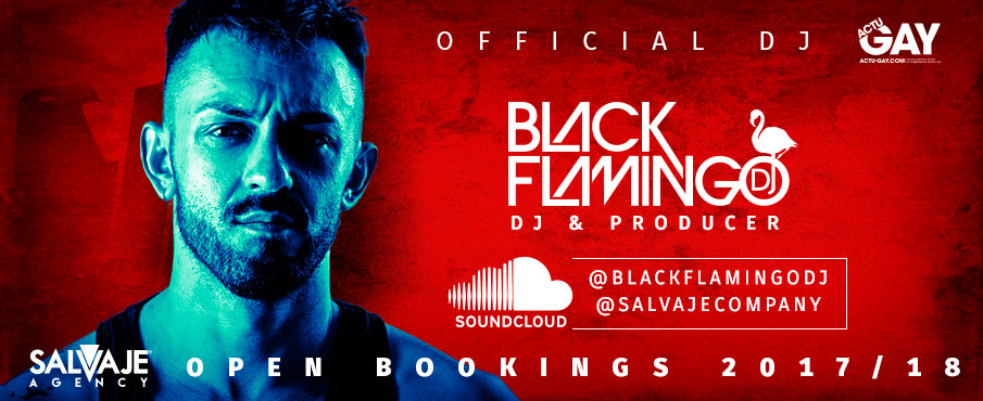 Black Flamingo Dj