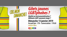 Gilets jaunes LGBTphobes ? Instrumentalisation ou réalité ? in Paris le Sun, January 13, 2019 from 05:00 pm to 08:00 pm (Meetings / Discussions Gay, Lesbian, Hetero Friendly, Bear)