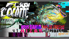 Flash Cocotte in Paris le Sat, May 11, 2019 from 11:30 pm to 06:30 am (Clubbing Gay, Lesbian)