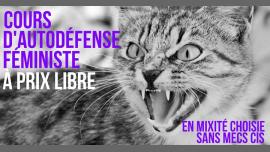 Cours d'autodéfense féministe à prix libre à Paris le ven.  8 février 2019 de 14h30 à 16h30 (Atelier Lesbienne)
