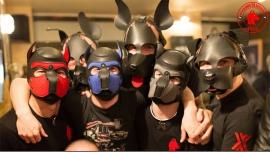 """Apéro """"Galette des Rois"""" Puppies & Handlers à Paris le sam. 14 janvier 2017 de 18h00 à 22h30 (After-Work Gay)"""