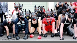 Apéro Puppys & Handlers in Paris le Sat, November 19, 2016 from 07:00 pm to 11:00 pm (Before Gay)