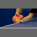 TIP Tennis de table 2019 à Paris le sam.  8 juin 2019 de 09h00 à 18h00 (Sport Gay, Lesbienne, Trans, Bi)