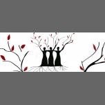 Le 8 mars de Frisse : Droits des femmes et handicaps a Lione le ven  8 marzo 2019 09:30-13:00 (Incontri / Dibatti Gay, Lesbica, Trans, Bi)