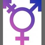 Groupe Trans à Reims du 30 septembre au 30 décembre 2017 (Rencontres / Débats Gay, Lesbienne, Trans, Bi)