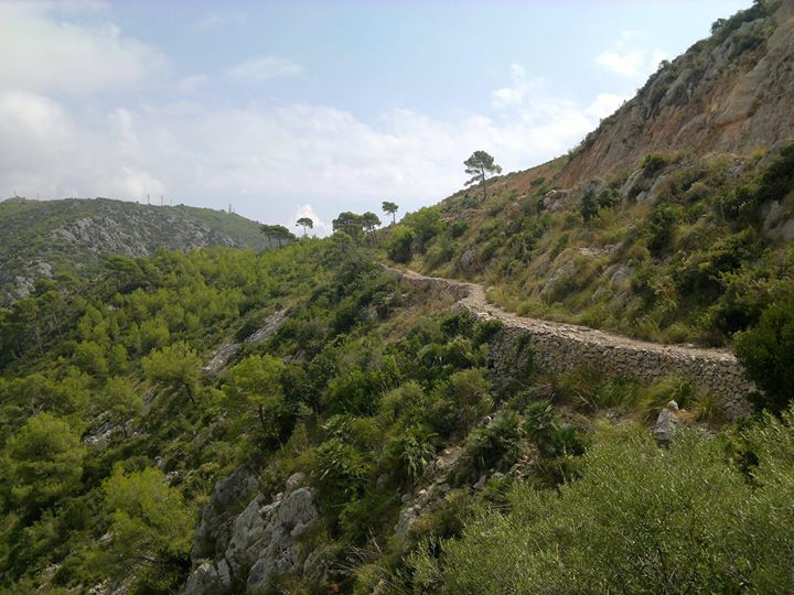 Hike Sitges - Parc del Garraf With Bears in Sitges le Mon, September  2, 2019 from 10:00 am to 05:00 pm (Meetings / Discussions Gay, Bear)
