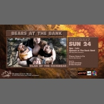 Bears at the Bank - Clan of the Cavebear in Sydney le So 24. Februar, 2019 16.00 bis 00.00 (After-Work Gay, Bear, Bi)