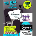 The Real House-cats of Albany! A fundraiser for Happy Cat Rescue in Albany le Sun, March 25, 2018 from 05:00 pm to 08:00 pm (Fund raising Gay)