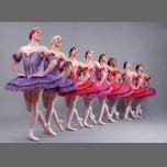 Les Ballets Trockadero De Monte Carlo a Amherst le mar  2 aprile 2019 19:30-22:30 (Spettacolo Gay friendly, Lesbica friendly)
