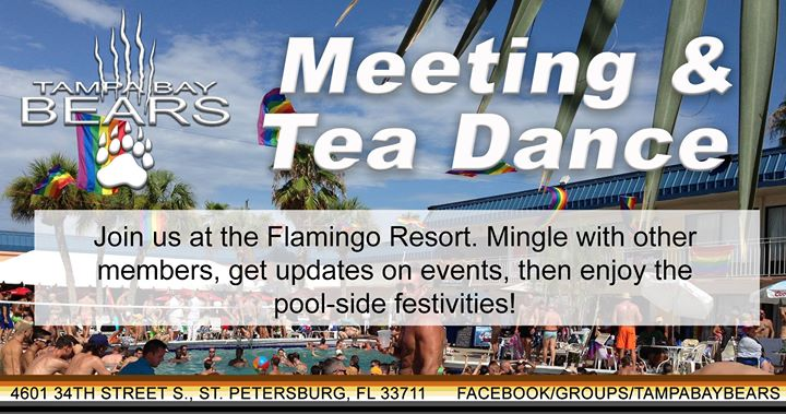 Tampa Bay Bears Monthly Meeting en St. Petersburg le dom 14 de julio de 2019 16:00-18:00 (Reuniones / Debates Gay, Oso)