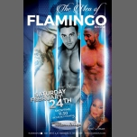 Men Of Flamingo Show with Host Roman in St. Petersburg le Sat, February 24, 2018 from 11:30 pm to 11:55 pm (Clubbing Gay)