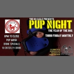 DC Eagle's Pup Night in Washington D.C. le Fri, November  9, 2018 from 08:00 pm to 03:00 am (Clubbing Gay)
