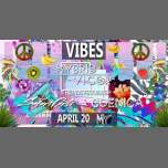 VIBES ⋆ April 20 in Honolulu le Sat, April 20, 2019 from 10:00 pm to 02:00 am (Clubbing Gay Friendly)