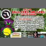 Fl Puppy Balls, Paws, And Claws Weekend à Augusta le ven. 13 avril 2018 de 20h00 à 00h00 (Festival Gay, Bear)