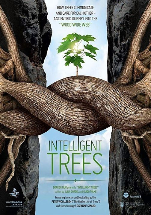 Intelligent Trees Fundraiser à Auckland le dim. 18 août 2019 de 17h00 à 20h00 (After-Work Gay Friendly, Lesbienne Friendly)
