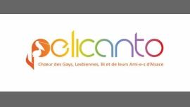 PelicantO - Freundlichkeit/Gay, Lesbierin - Strasbourg