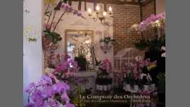 Le Comptoir des Orchidées - Shopping divers / Gay Friendly - Paris