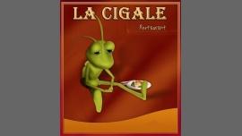 La Cigale - Restaurant/Gay Friendly - Bordeaux