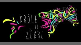 Drôle de Zèbre - Bar/Gay, Lesbica - Lyon
