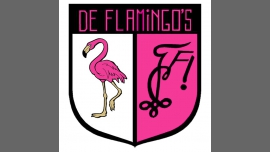 De Flamingo's - Youth and Students / Gay, Lesbian, Trans, Bi - Anvers