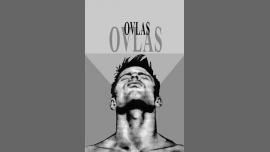 Ovlas - Moda/Gay - Barcelone
