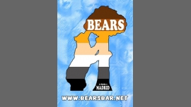 Bears Bar - Bar / Gay, Bear - Madrid