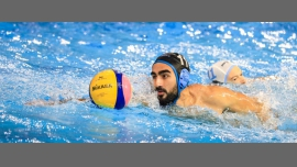 Sydney Stingers Waterpolo - Sport / Gay - Ryde