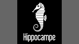 Sauna Hippocampe - Sauna/Gay - Québec