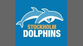 Stockholm Dolphins - Sport/Gay, Lesbienne, Trans, Bi - Stockholm
