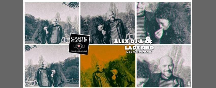 Alex DJ-A & LadyBird live performance ( carte blanche )