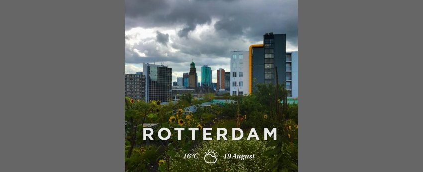 Week-end 'natuure et architectuure' à Rotterdam
