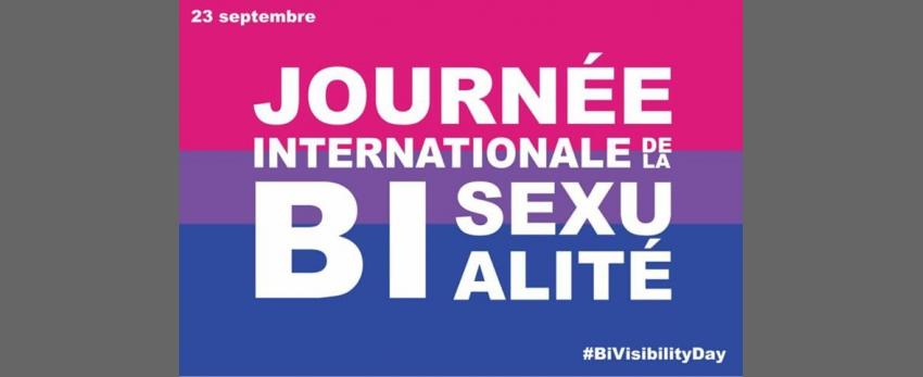 Marche pour la visiBI'lité des personnes Bi, Pan et +
