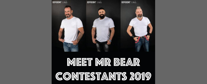 Meet the Mister Bear Netherlands contestants (ABW2019)