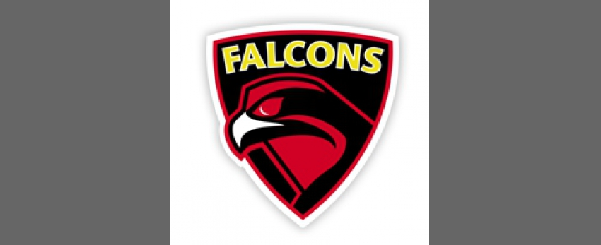 London Falcons FC