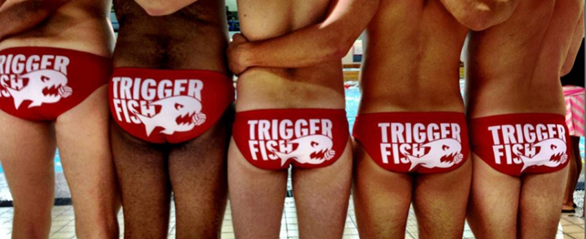 Triggerfish Water Polo