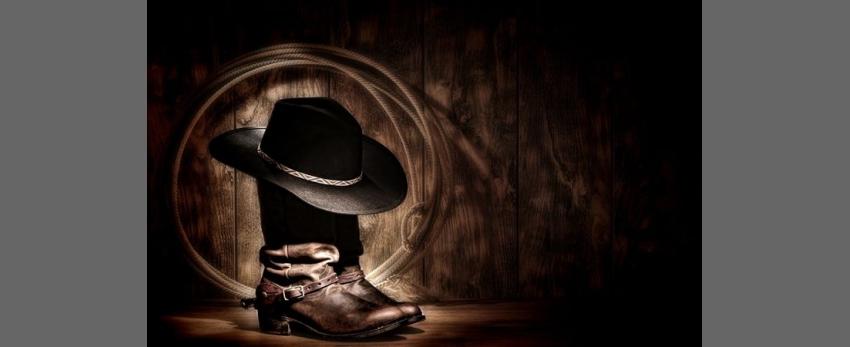 Cowboy Roundup