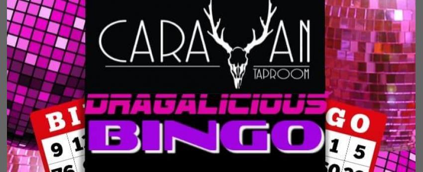 Dragalicious Bingo