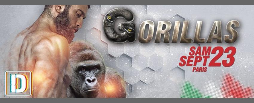 Gorillas Paris #2